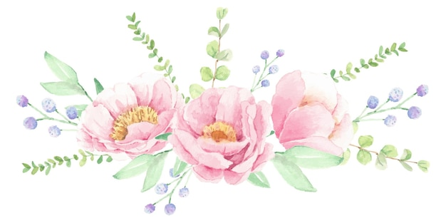 Disposizione del mazzo del fiore della peonia rosa dell'acquerello isolata