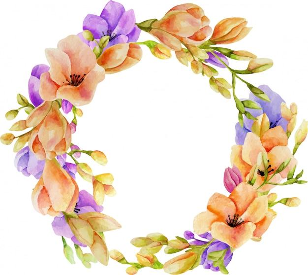 Corona di fiori di fresia rosa e viola dell'acquerello
