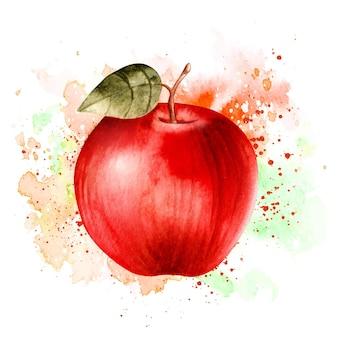 Frutta di mela fresca disegnata a mano realistica dell'acquerello