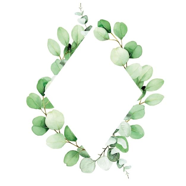 Cornice rombo acquerello con foglie e rami di eucalipto