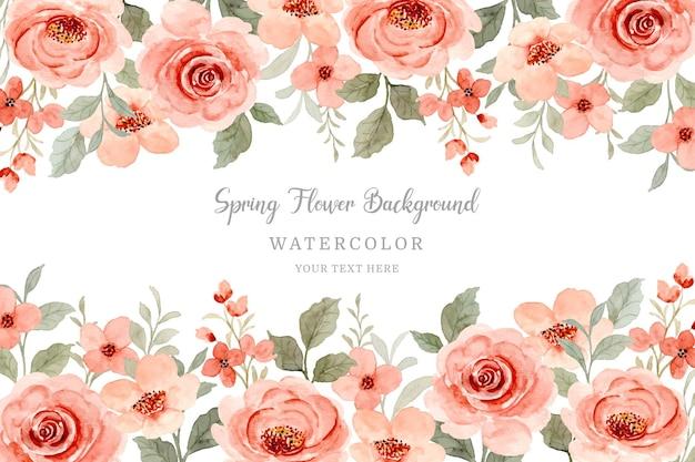 Cornice fiore rosa dell'acquerello