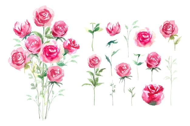 Acquerello rosa con bouquet di stile botanico foglia verde, illustrazione isolata.