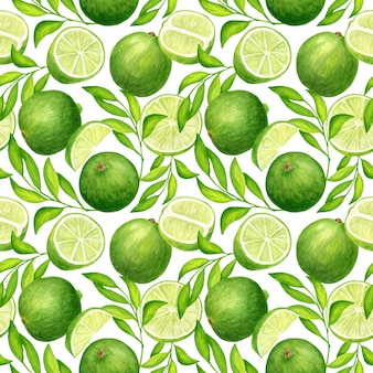 Reticolo senza giunte dell'acquerello con foglie e frutti di calce verde