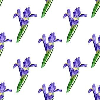 Modello senza soluzione di continuità acquerello con iris lilla. sfondo verniciato vettore. struttura di sfondo vettoriale per tessuto, carta regalo, tessile