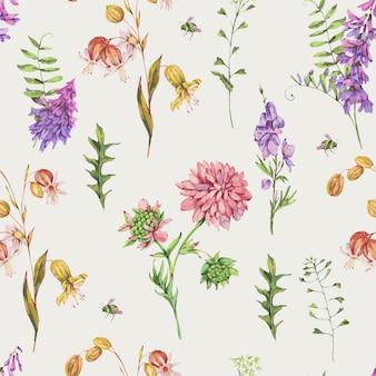 Reticolo senza giunte dell'acquerello con fiori di prato estivo, fiori di campo. biglietto di auguri floreale botanico. raccolta di fiori medicinali
