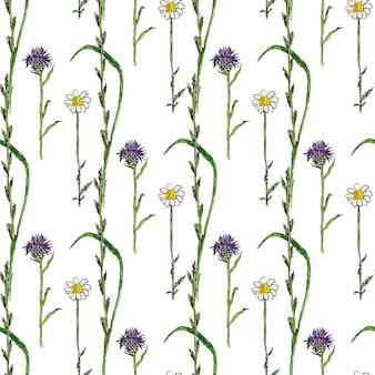 Modello senza soluzione di continuità acquerello con fiori selvatici. sfondo vegetale di medecine