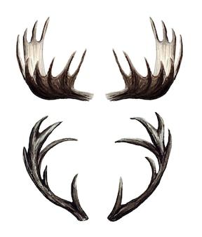 Insieme dell'acquerello di corna di cervo, corna di alce, illustrazione dipinta a mano isolato su bianco.