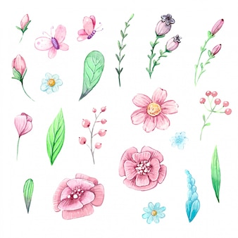 Insieme dell'acquerello di piante, foglie e bacche
