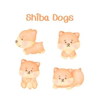 Set di cani shiba dell'acquerello.