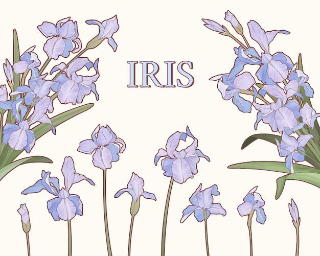 Giardino di iris viola stile acquerello su superficie beige beige