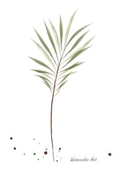 Foglie di palma verde trasparente dell'acquerello isolate su priorità bassa bianca. acquerello botanico artistico dipinto a mano. perfetto per inviti, biglietti di auguri o decorazioni murali.