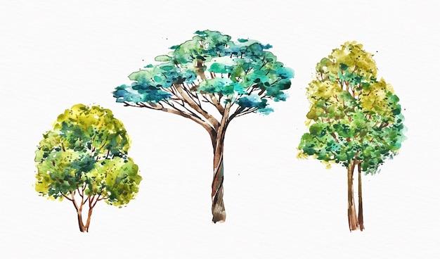 Tipo di acquerello della collezione di alberi