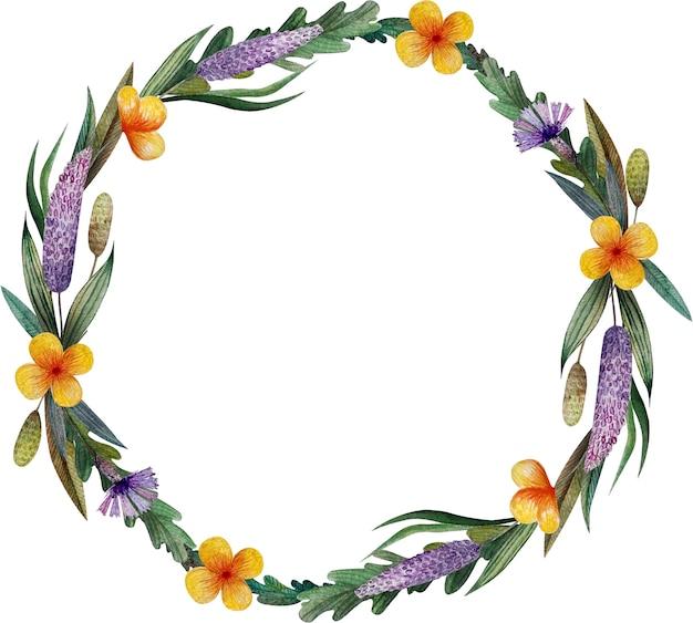 Corona dell'acquerello con fiordalisi selvatici ed erbe aromatiche