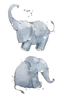 Illustrazione dipinta a mano di elefanti ad acquerello