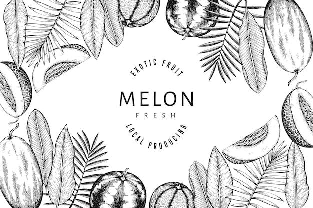 Modello di disegno di angurie, meloni e foglie tropicali. illustrazione di frutta esotica di vettore disegnato a mano. cornice di frutta in stile inciso. banner botanico vintage.