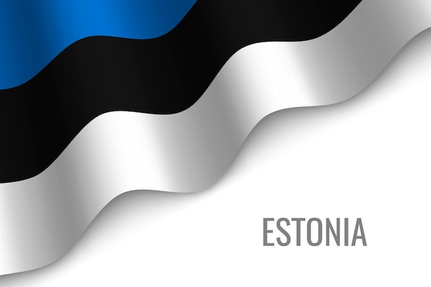 Sventolando la bandiera dell'estonia
