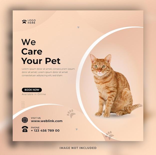 Ci prendiamo cura del tuo animale domestico social media e design del modello di banner