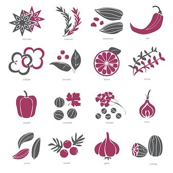 Set di icone web - spezie, condimenti ed erbe aromatiche - vettore
