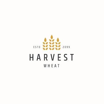 Vettore piatto del modello di progettazione dell'icona del logo dell'agricoltura del grano di grano