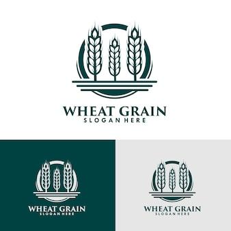 Modello di progettazione del logo del chicco di grano