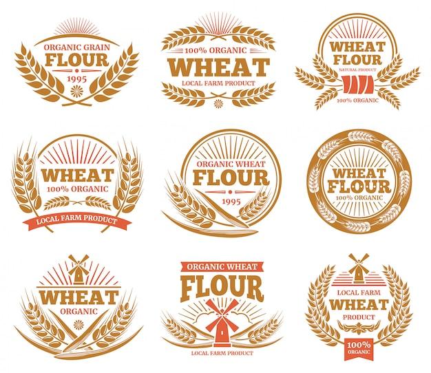 Prodotti di grano e etichette di pane. distintivi di spighe di grano natura.