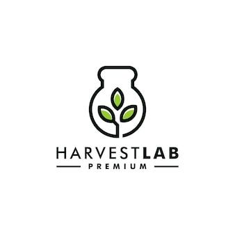 Vettore dell'icona del grano di progettazione del logo del grano