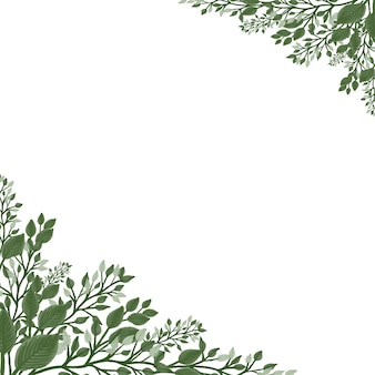 Sfondo bianco con pianta selvatica verde fresca