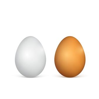 Uova bianche e marroni. uova di gallina realistiche. illustrazione su sfondo bianco
