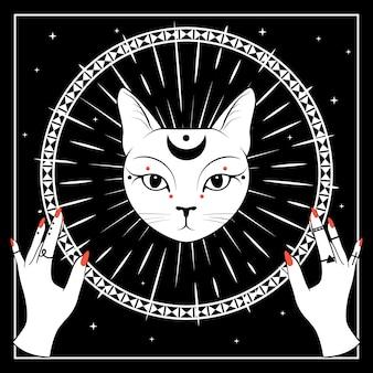 Faccia di gatto bianco con la luna sul cielo notturno