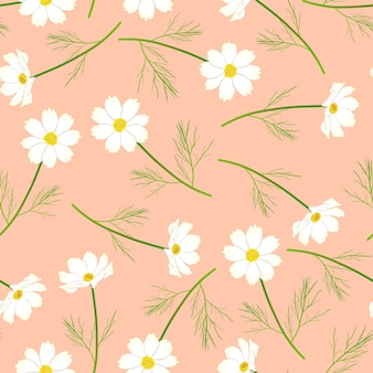 Fiore bianco dell'universo su fondo di color salmone rosa.
