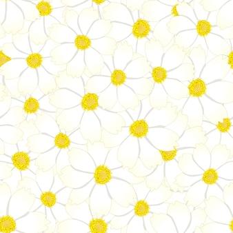 Fondo senza cuciture del fiore bianco dell'universo