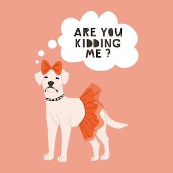 Cane bianco con fiocco in testa, soffice gonna rossa e collare intorno al collo.