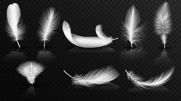 Piume bianche sulla raccolta di sfondo alfa trasparente lucido. set di piume roteate morbide volumetriche realistiche