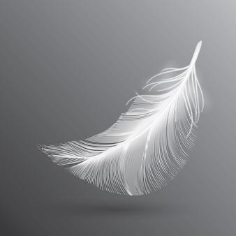 Piuma di uccello volante bianca isolata