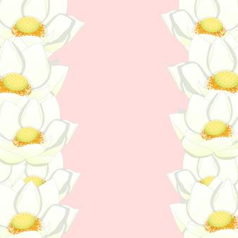 Confine di loto bianco bianco