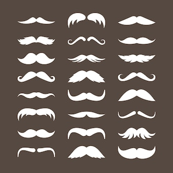 Set di baffi bianchi