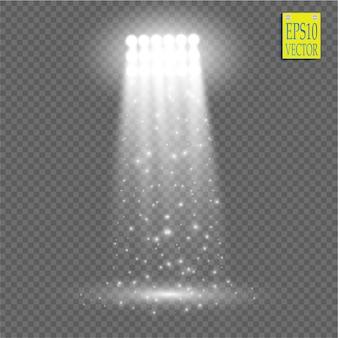 Effetto luce spotlight bianco su sfondo trasparente