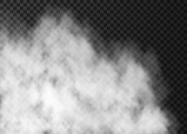 Nebbia trasparente bianca isolata su oscurità