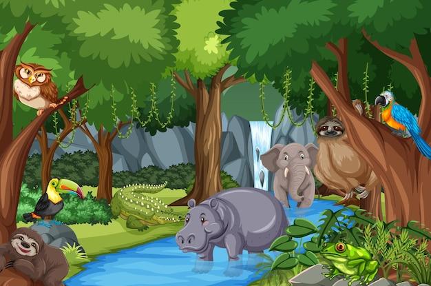 Personaggio dei cartoni animati di animali selvatici nella scena della foresta