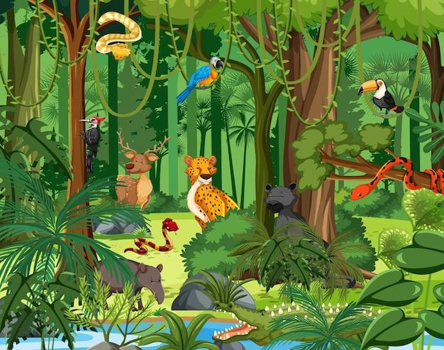 Personaggi dei cartoni animati di animali selvatici nella scena della foresta