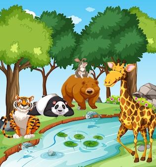 Animali selvaggi nella foresta alla scena del giorno