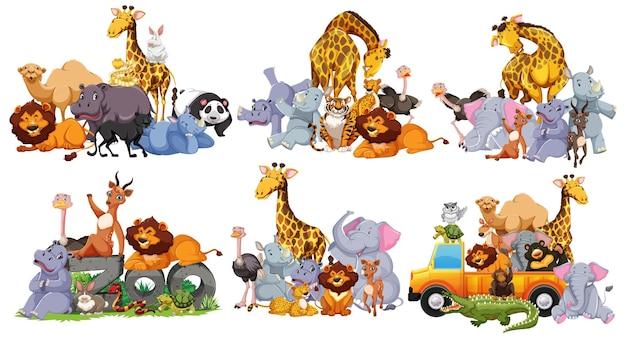 Gruppo di animali selvatici in molte pose in stile cartone animato isolato su bianco