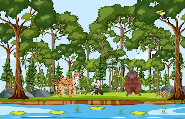 Animali selvatici con ruscello che scorre attraverso la scena della foresta