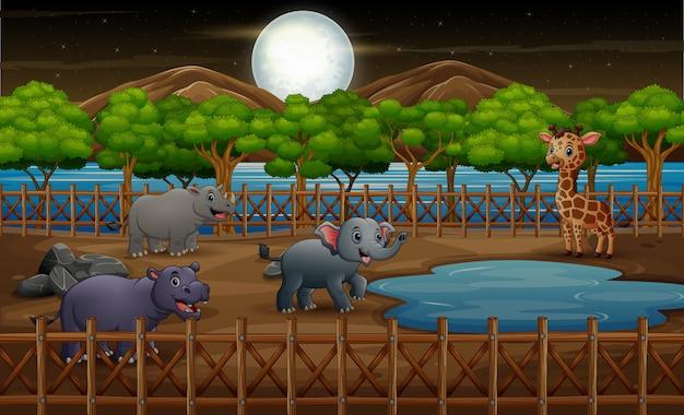 Gli animali selvatici nello zoo parcheggiano la gabbia all'aperto sulla natura