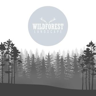Fondo selvaggio della foresta di conifere. pino, natura del paesaggio, panorama naturale del legno. modello di progettazione di campeggio all'aperto. illustrazione vettoriale