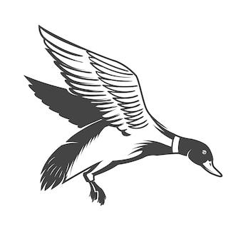 Icona di anatra selvatica su sfondo bianco. elementi per logo, etichetta, emblema, segno. illustrazione