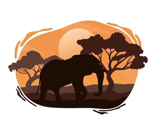 Scena della siluetta della fauna dell'elefante selvaggio