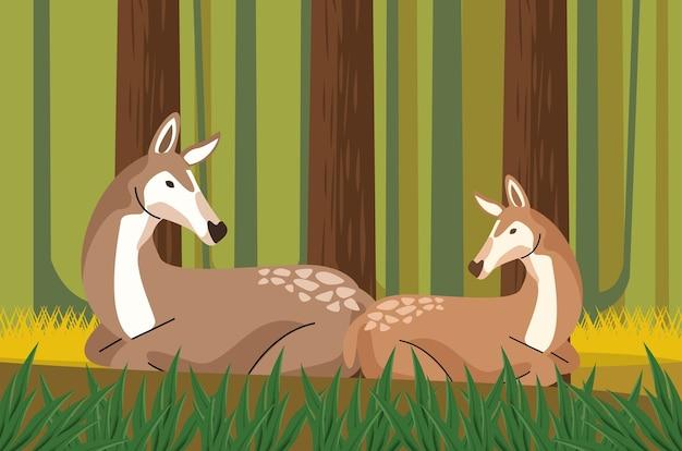 Animali selvatici cerbiatti nella scena della foresta