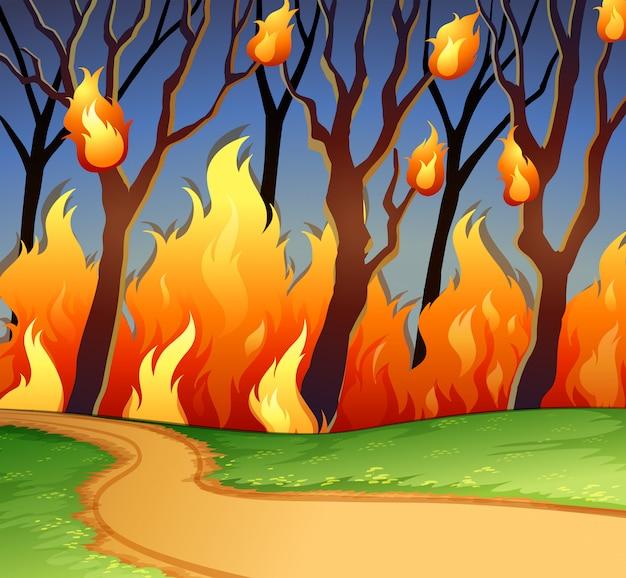 Incendio selvaggio nella foresta