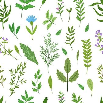 Modello senza cuciture di erbe selvatiche. foglie di cartone animato, brunch, fiori, ramoscello. illustrazione disegnata a mano.